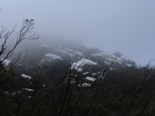 Mt Buffalo NP – July '15