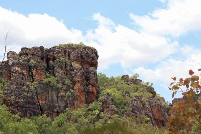Venturing into Kakadu