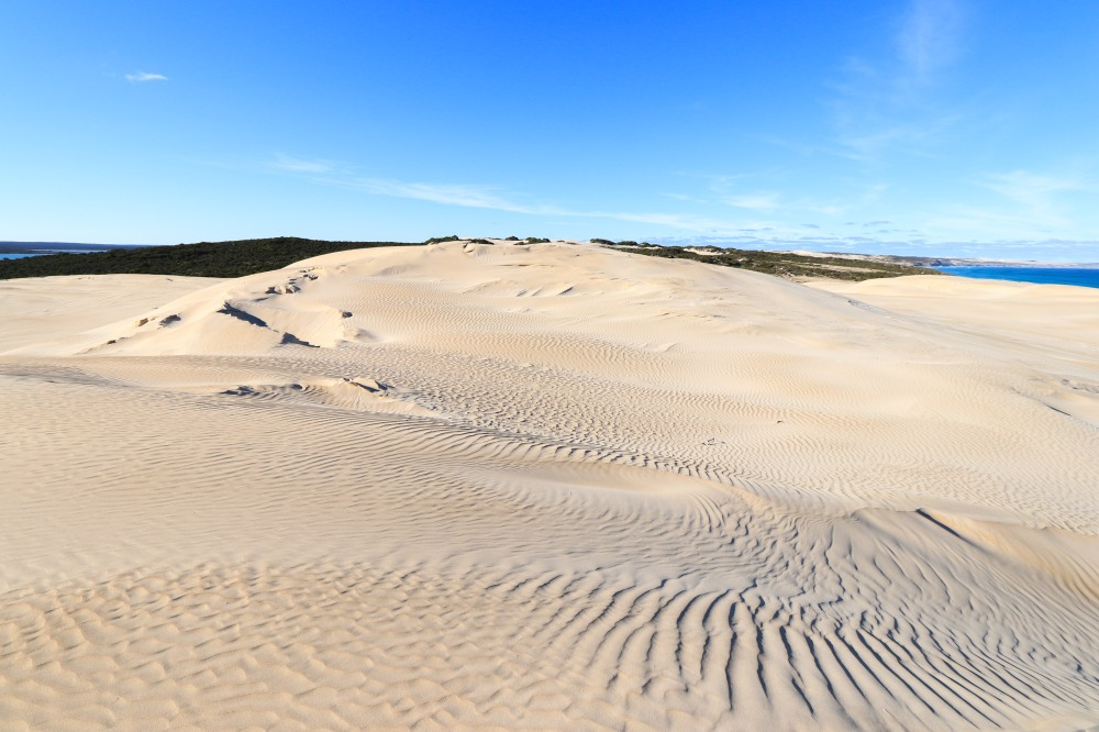 Dunes and fantastic winter sunshine, Lincoln National Park, Eyre Peninsula