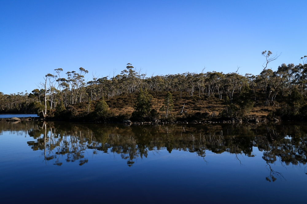 Blue sky and lake side vegetation reflected in tarn.
